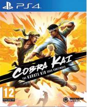 Cobra Kai - The Karate Kid Saga Continues (PS4)