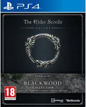 Elder Scrolls Online - Blackwood Collection (PS4)